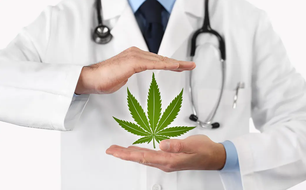 Alongside this established use is the use of cannabis in the treatment of chronic pain.