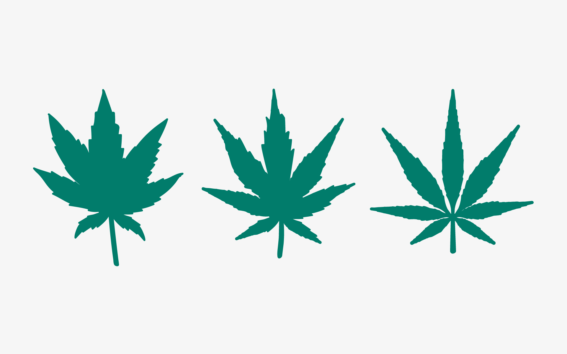 There are basically three types of marijuana commonly found in nature, specifically identified as sativa, indica and ruderalis hemp.