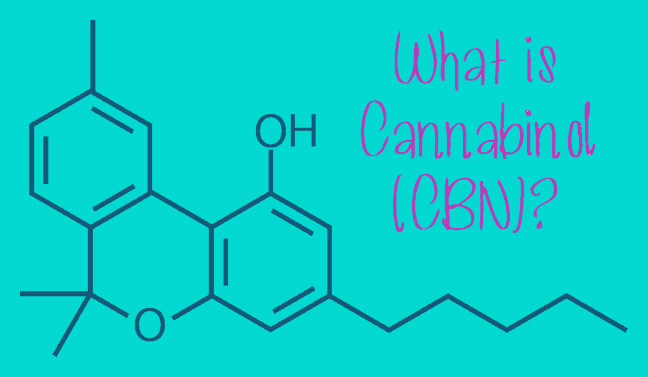 CBN or cannabinol has also been the subject of scientific research and studies due to its characteristic sedative effects.